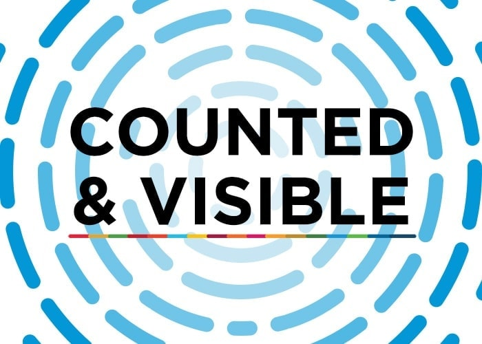 Counted and visible: Global conference on the measurement of gender and intersecting inequalities 1