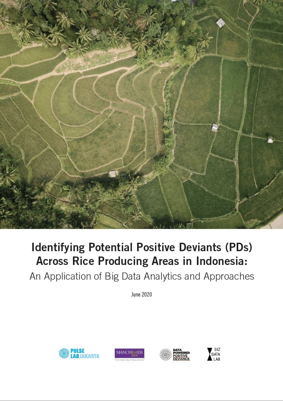 Identifying Potential Positive Deviants  Across Rice Producing Areas in Indonesia 5
