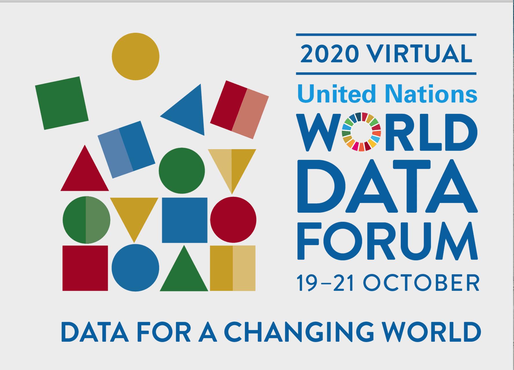 UN World Data Forum 1